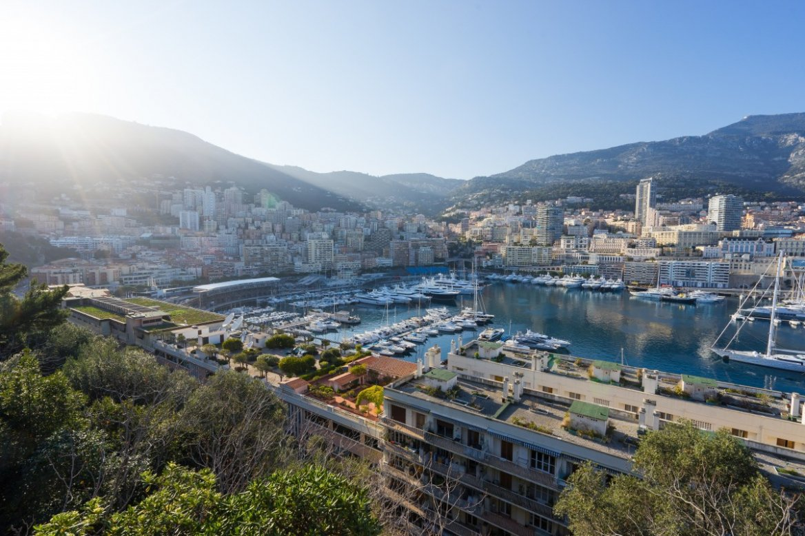 monaco_harbor_port_yachts_city_town_famous_luxury-1063851.jpg