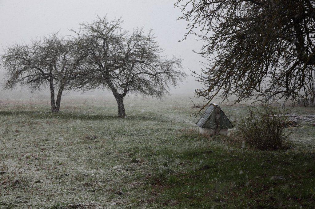 1 снег 2.jpg